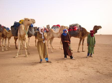 Trek Sahara - The Cameleers