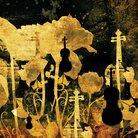 Beethoven Violin Con
