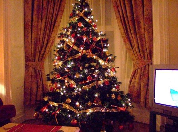 christmas tree tv lights