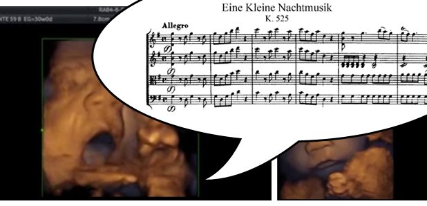 foetus singing mozart
